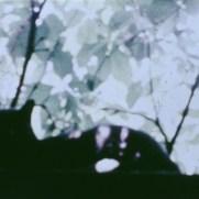 Carolee Schneemann 1