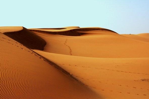 desierto relato