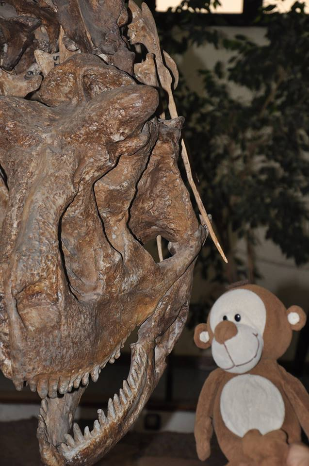 Mucuvinha com um dinossauro em Neuquén