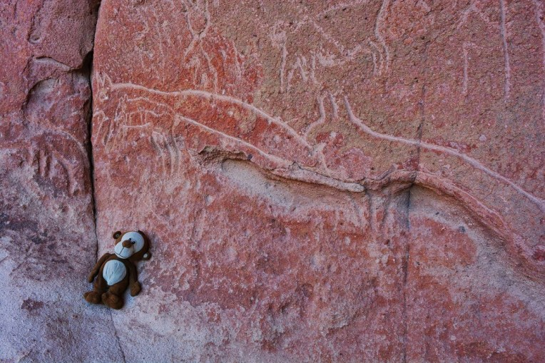 Mucuvinha com um hieróglifo de lobo, Atacama