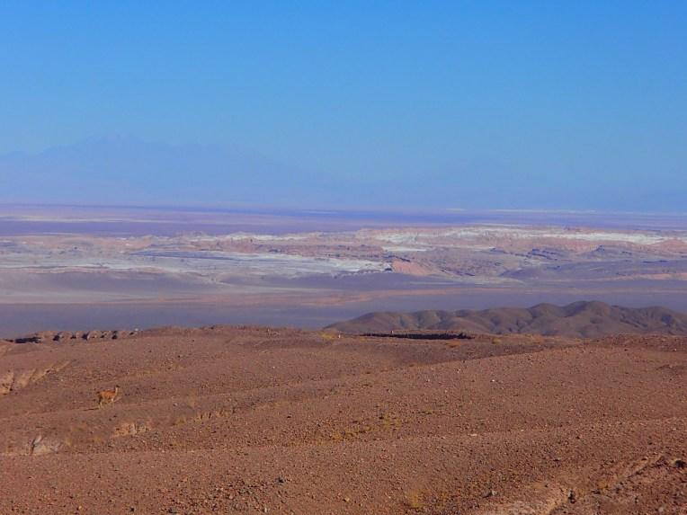 Cordilheiras de Sal e dos Andes no Atacama