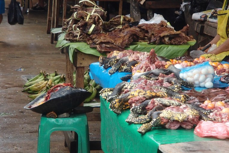 Carne de tartaruga a venda no Mercado de Belén, em Iquitos