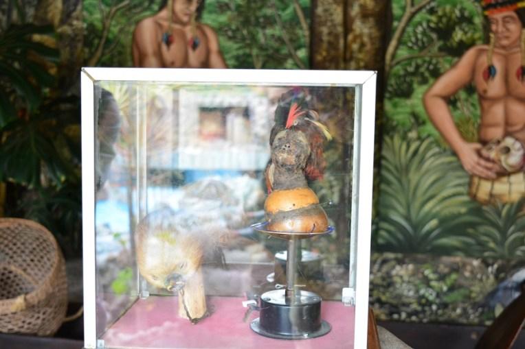 Miniatura de cabeça, ritual das tribos do Amazonas