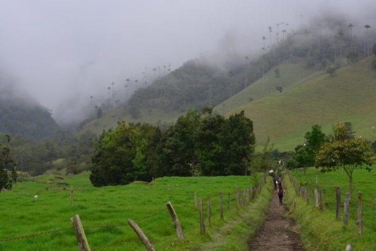 O caminho pelo Valle de Cocora