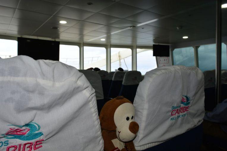 Mucuvinha viajando para Cozumel