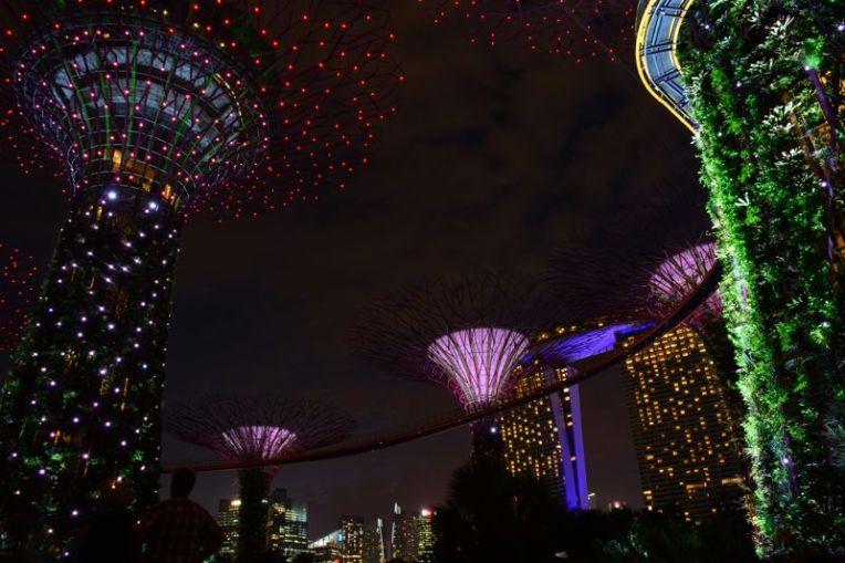 Gardens by the Bay, Singapura