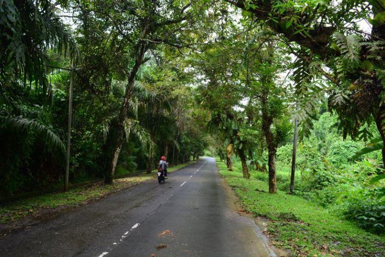 Estrada para Sepilok