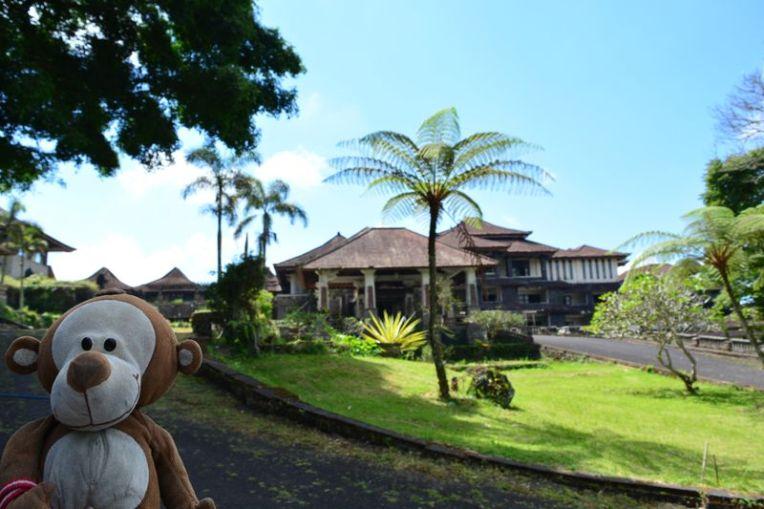 Mucuvinha no hotel abandonado de Bali