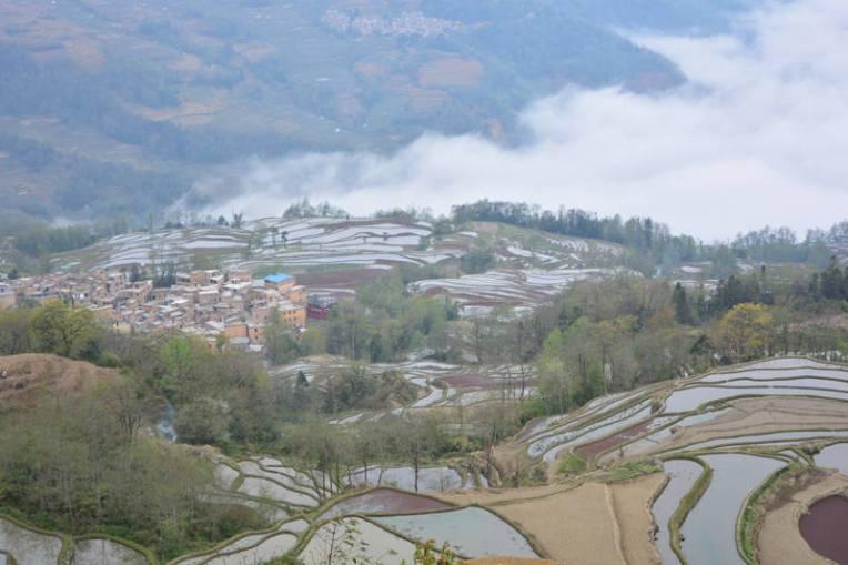 Plantações de arroz de Yuanyang, China