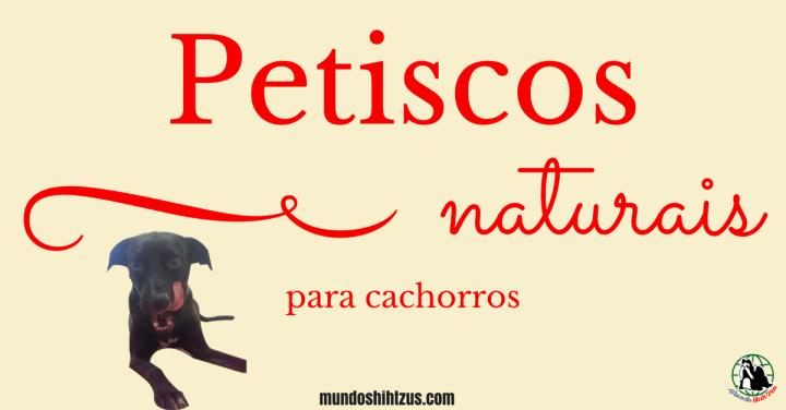 Petiscos naturais fáceis e práticos para cachorros