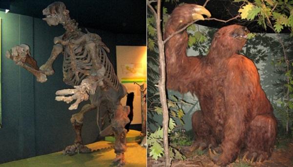 Top 10 animais incríveis que já foram extintos - Preguiça-Gigante