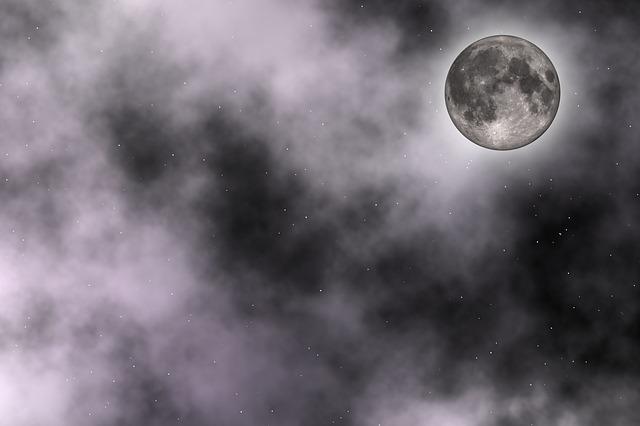 Apoeira da Lua é tóxica para humanos