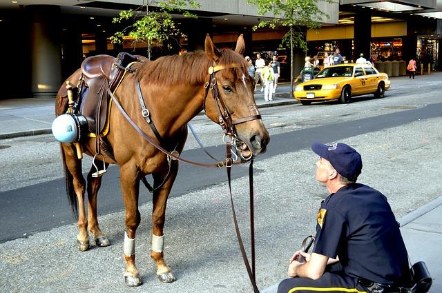 Os cavalos e a polícia