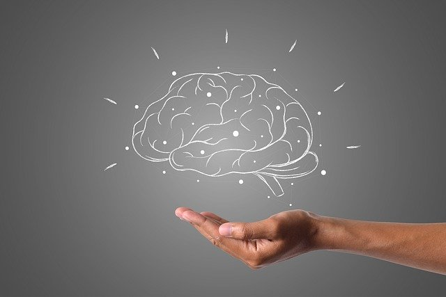 Aos 18 anos, nosso cérebro para de crescer