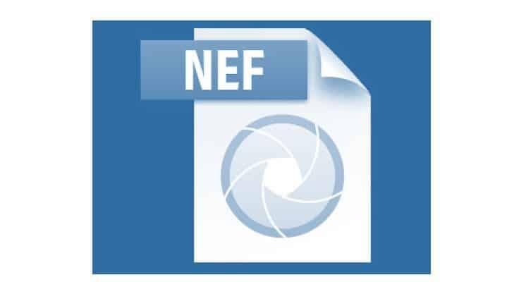 Вот как открыть файлы NEF в Windows 10