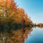 The Mundus Brief: September