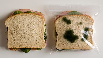 Gross-Lunch-Bag.jpg