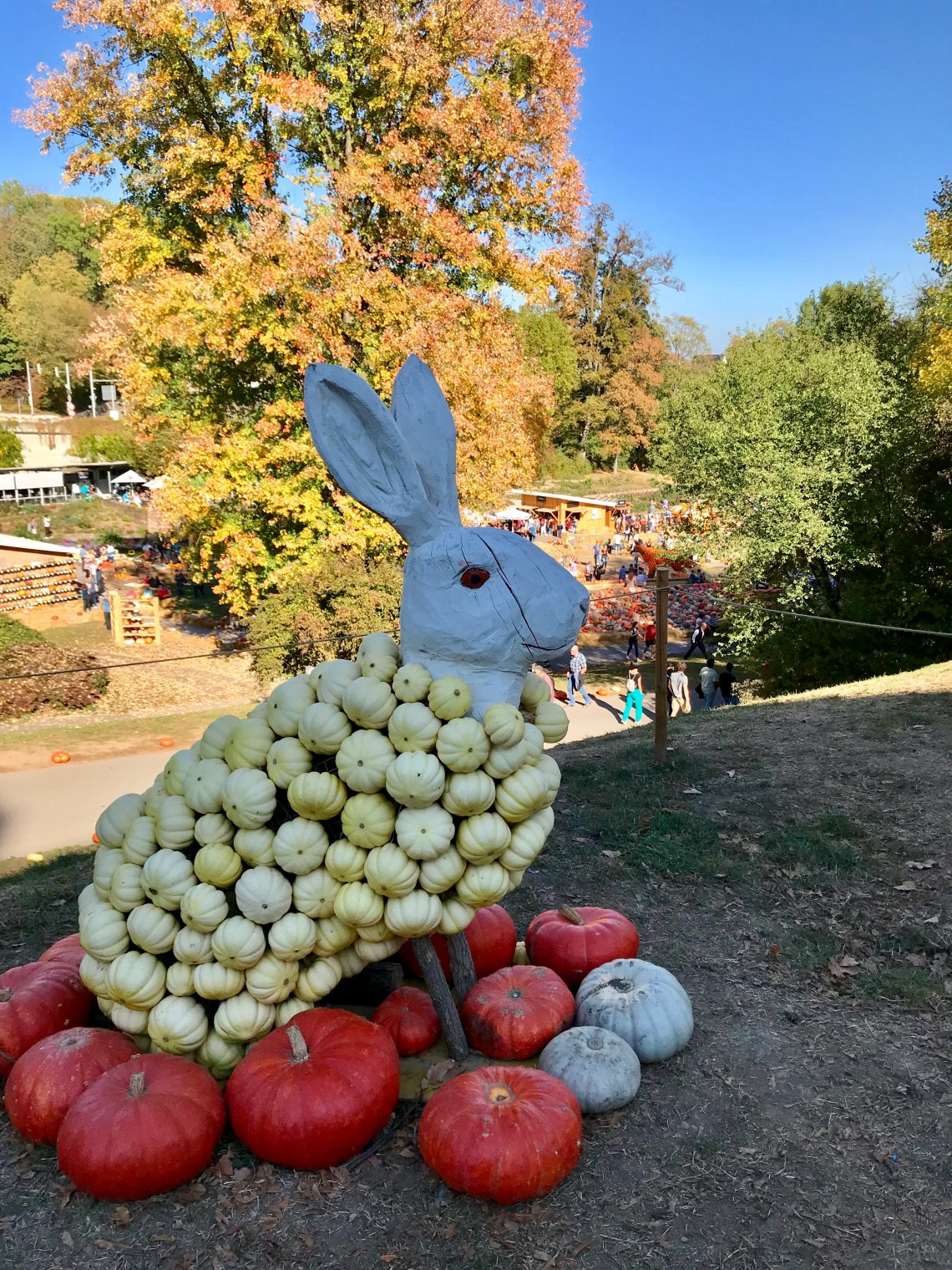 Ludwigsburg Pumpkin Festival_0232