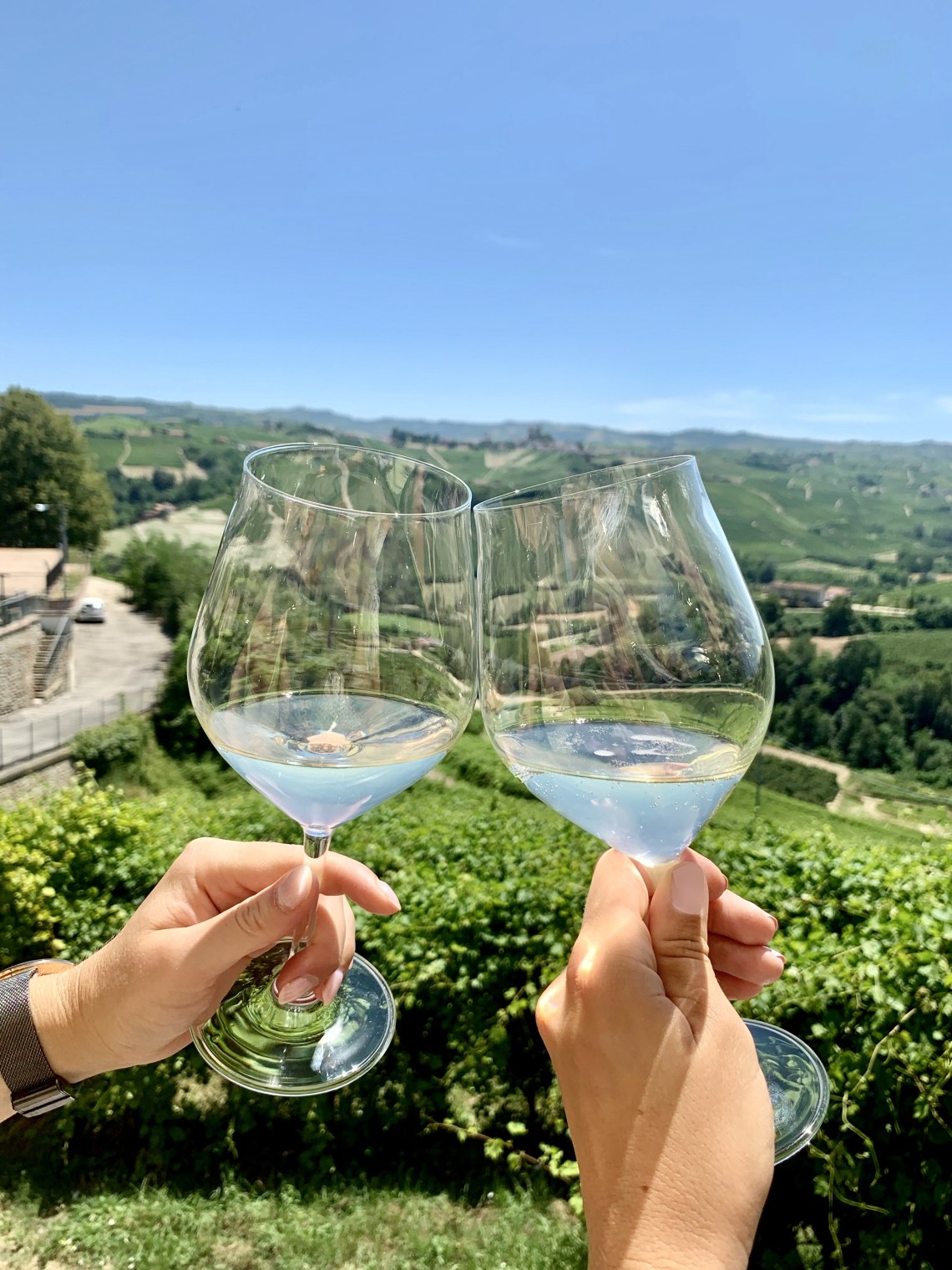 Barolo Itlay Wine Travel Guide