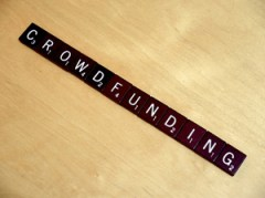 Crowdfunding y ONG