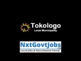 Tokologo Local Municipality vacancies 2021   Lejweleputswa Government jobs   Free State Municipality vacancies