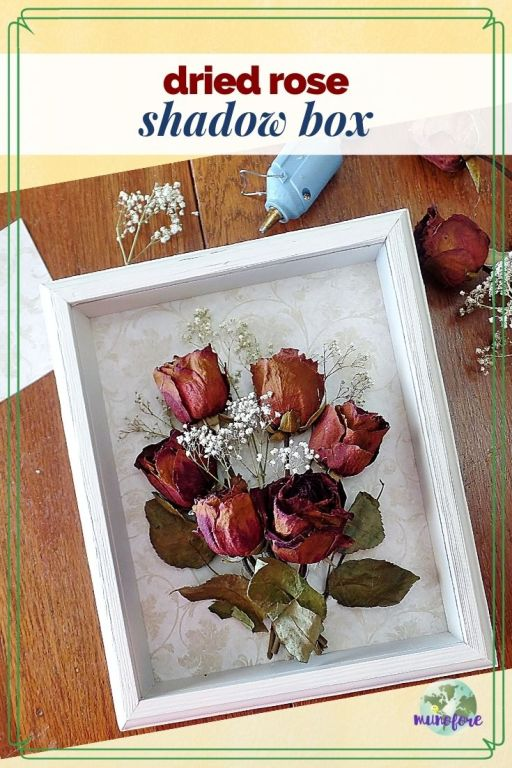 top down view of dried rose shadow box