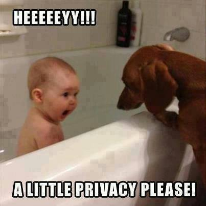 1429594341_a-little-privacy