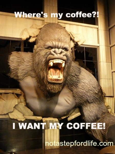 Adorable and Funny Animal Coffee Memes (Friday Frivolity ...