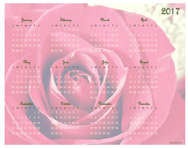 2017 rose calendar