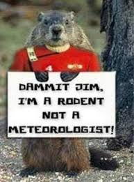 Cute and Funny Groundhog memes - celebrate Groundhog Day with these adorable groundhog memes. funny memes, cute animal memes.