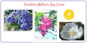 Printable Mother's Day Cards: free floral Mother's Day cards that can be printed at home.