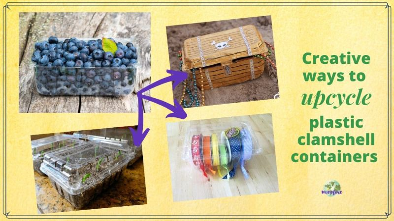 "collage of plastic fruit containers with text overlay ""Creative ways to upcycle plastic clamshell containers"""
