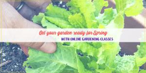 online gardening classes