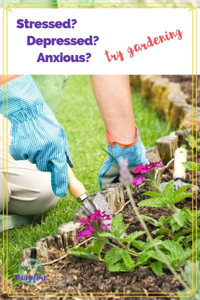 "woman digging in garden with text overlay ""stressed, depressed, anxious? try gardening"""