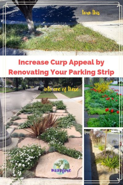 """collage of parking strip photos with text overlay """"Increase Curp Appeal by Renovating Your Parking Strip"""""""