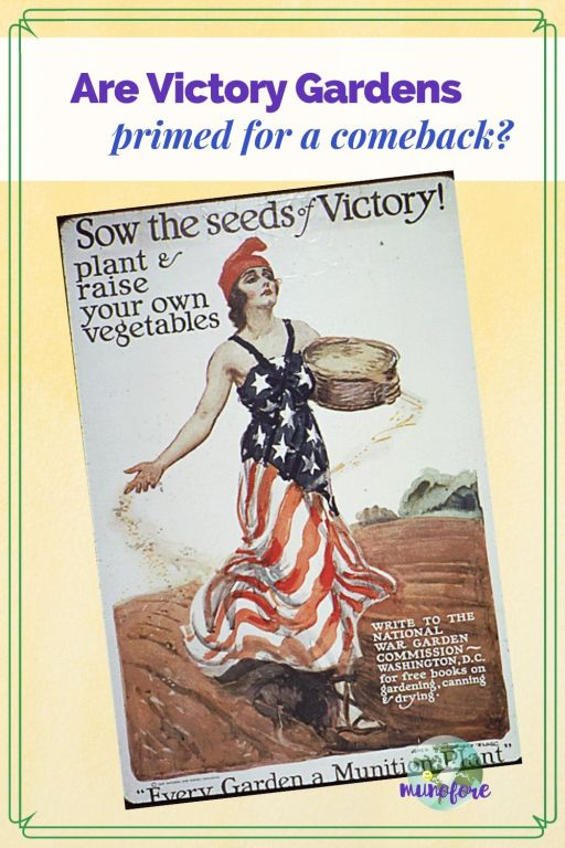 "vintage Victory Garden poster with tixt overlay ""Are Victory Gardens Primed for a Comeback?"""