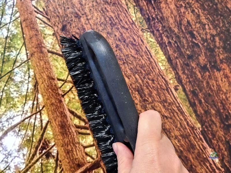 wallpaper brush on wall mural