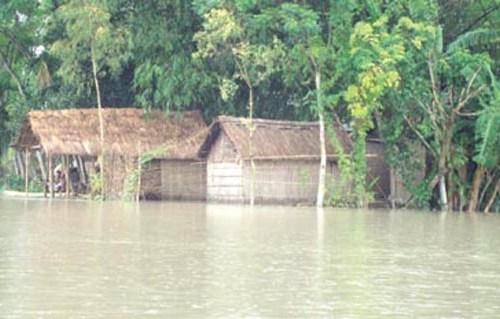 padma floode