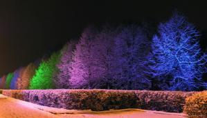 Украшение Петрозаводска к Новому году будет дополнено новыми объектами