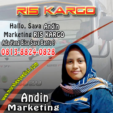 marketing andin