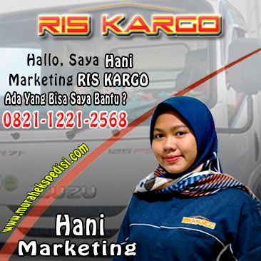 marketing hani