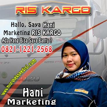 marketing hani