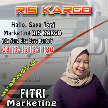 marketing ris kargo