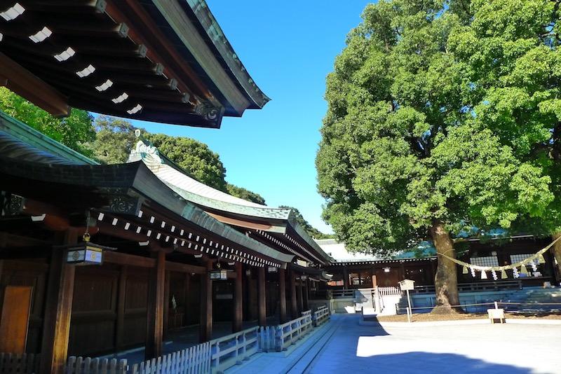 Meiji-Jingu Harajuku