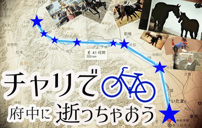 自転車旅,競馬場,デスペラード八星ひきこもり座