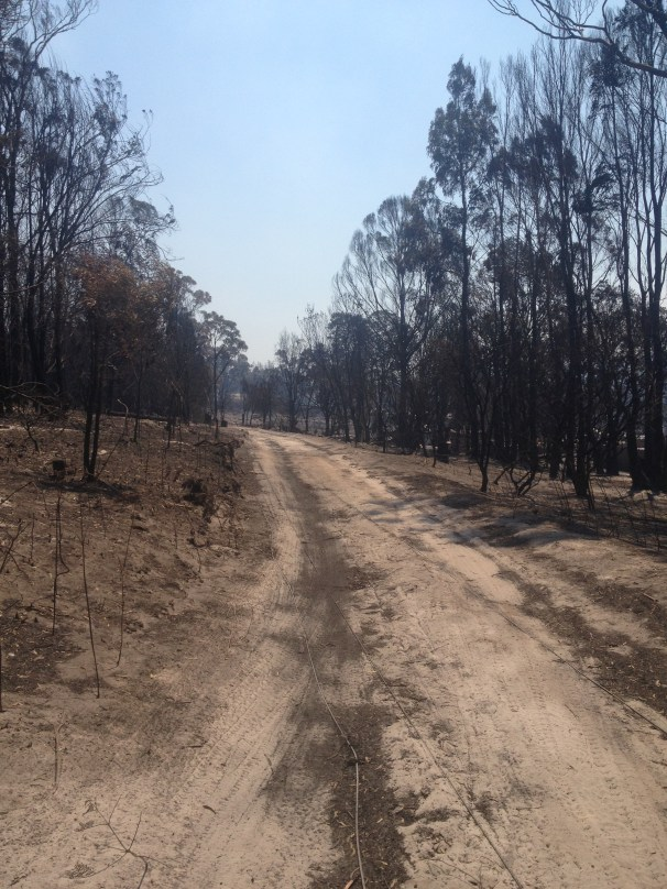Later that afternoon we arrive home to Duck Creek Murdunna. This is the driveway to Rachel's house - a walk Jet and Rachel took only 2 days earlier, with the expectation that nothing remained beyond. Thankfully there was a home to return to, although surrounded by danger and devastation.