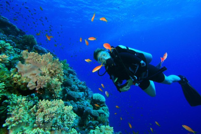 Good buoyancy while diving