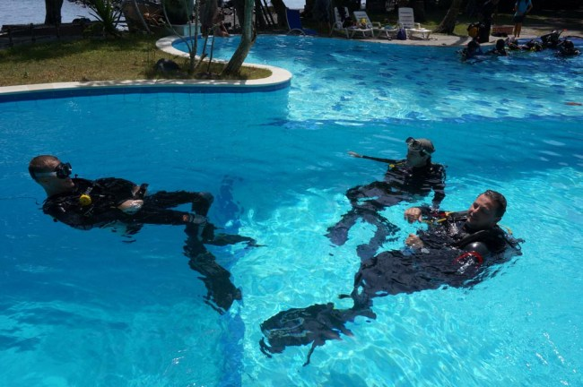 Divers in pool