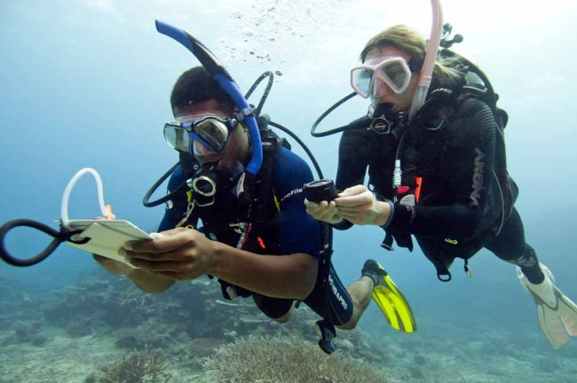 Compass diving during PADI Advanced Open Water Course