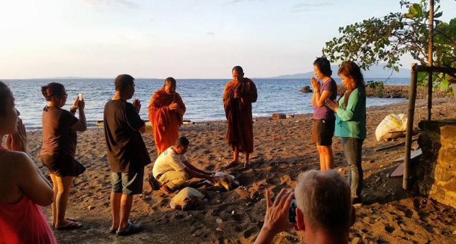 Turtle release by Buddhist monks at Murex Manado